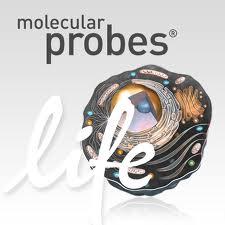 cellular biology app