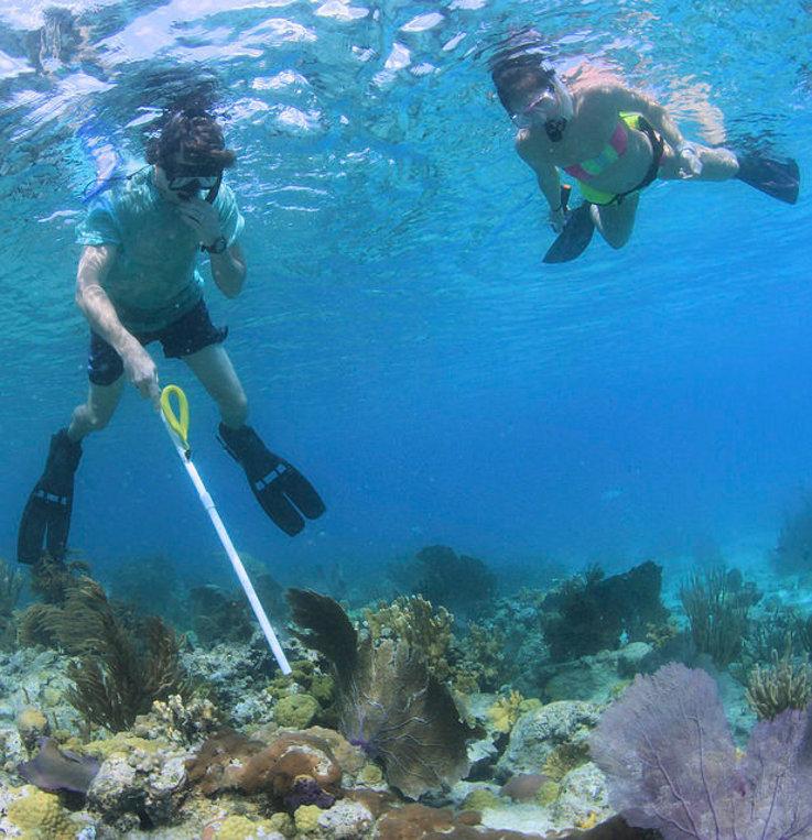 Why marine biology matters 3
