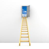 ladder-to-success1