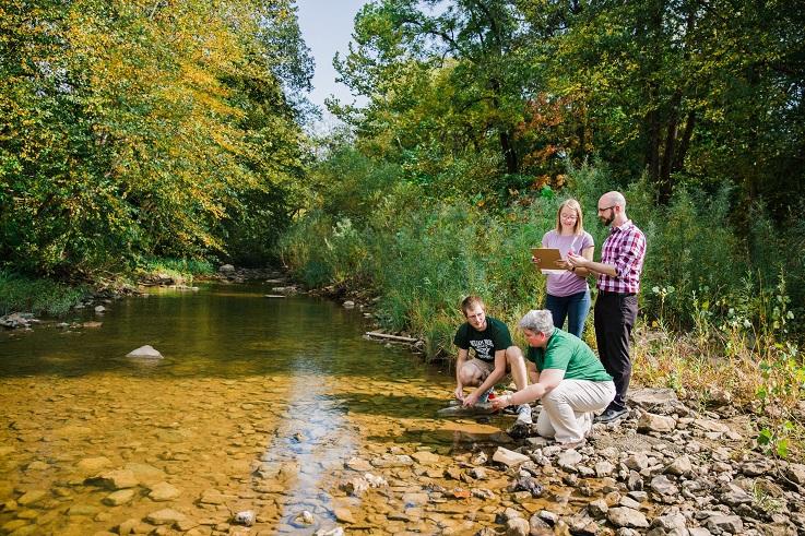 stinson creek bachelors in biology research